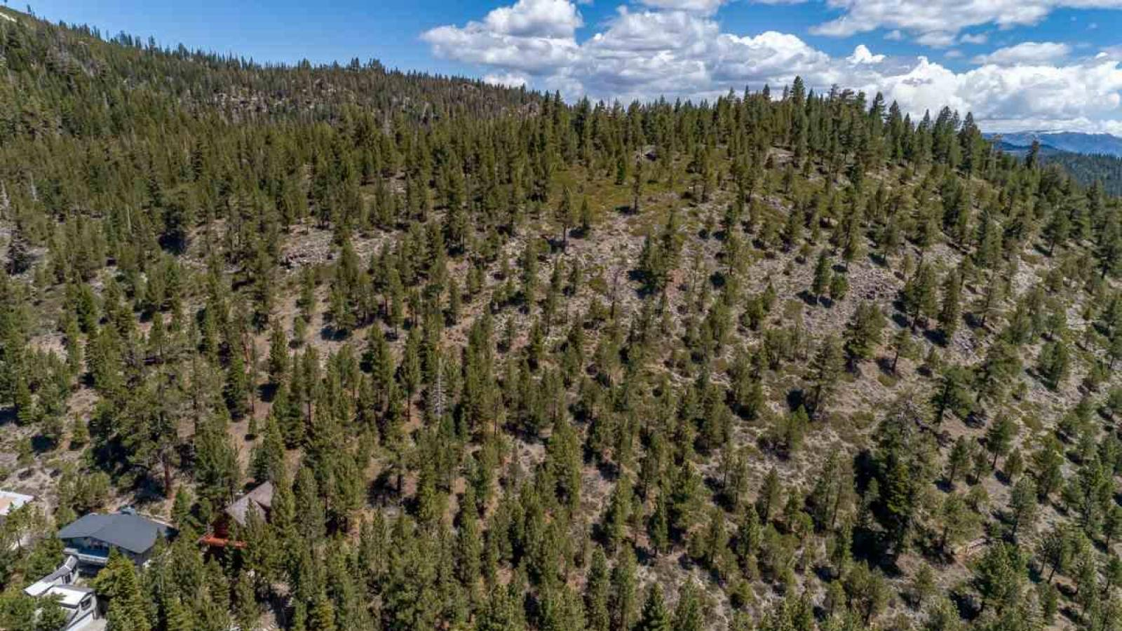 212 Forest Trail, Mammoth Lakes, California 93546, ,Vacant Land,For Sale,Forest Trail,190390