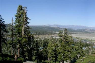 545 Fir, Mammoth Lakes, California 93546, ,Vacant Land,For Sale,Fir,106470